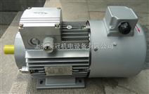 YVF变频电机/台州紫光电机价格