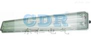 BAY51-Q系列防爆防腐全塑荧光灯(IIC) 粉尘防爆防腐荧光灯
