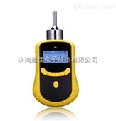 泵吸式一氧化碳检测仪,一氧化碳泄漏检测仪