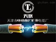 RVSP22铠装信号电缆平方报价//价格