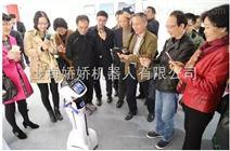 中国zui红机器人出租出售
