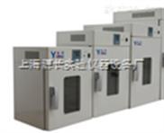 30升立式电热鼓风干燥箱 DHG-9030A