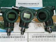 恒远一体式专业/智能压力变送器XPT133