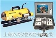 SeaLion-2水下机器人