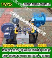CX-100燃烧机送风风机,甲醇燃烧鼓风机