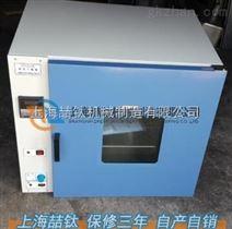 【电热鼓风烘箱DHG-9140
