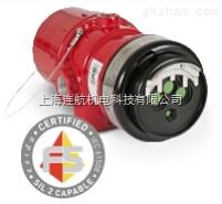 DET-TRONICS可燃气体检测仪器