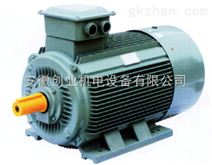 YE2-80M1-2 YE2系列80M1三相异步电动机0.75Kw3000r全铜冷轧国标及定制销售