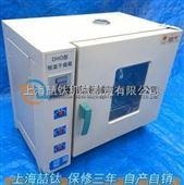 电热鼓风干燥箱(烘干箱)