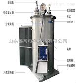 高压馈电线路调压器 高压单相调压器厂家