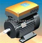 VEM/德国VEM标准三相异步电机VEM K22R