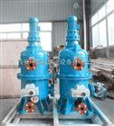 電站濾水器DLSIII-100/250報價