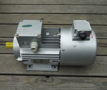 电机-紫光电机-三相异步电机