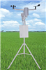 ST-TXQY田间小气候自动观测仪