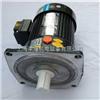 CV-1500W立式齿轮减速电机